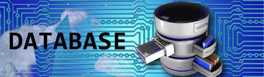 """Banche Dati Edilizia: scritta """"database"""" accanto al disegno di un database su sfondo azzurro con circuiti"""